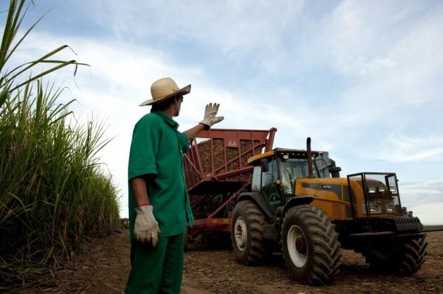 Resultado de imagem para Crise do etanol segura plano de usinas de biomassa